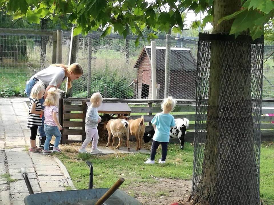 Op bezoek bij kinderboerderij De Stek in Almere